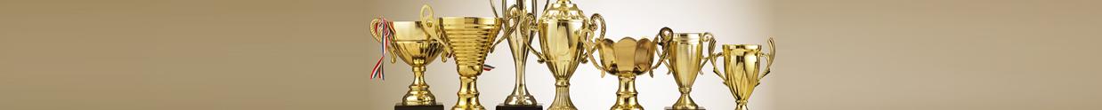DCR Awards